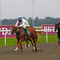 Kempton 25th September 2013