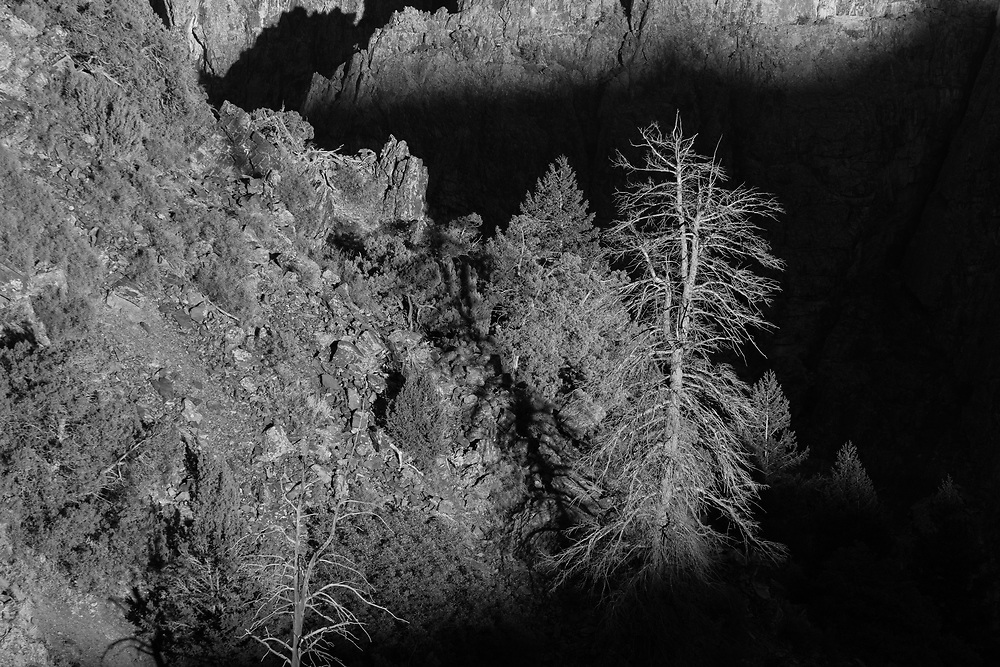http://Duncan.co/dead-trees-and-black-canyon