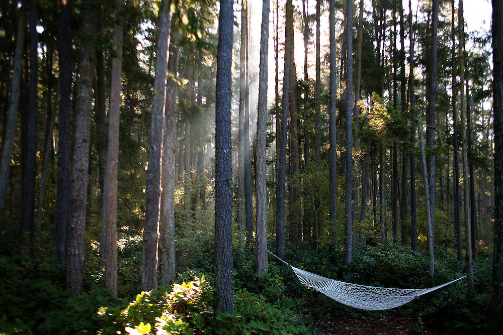 Hammock in Paradise, Lopez Island, Washington