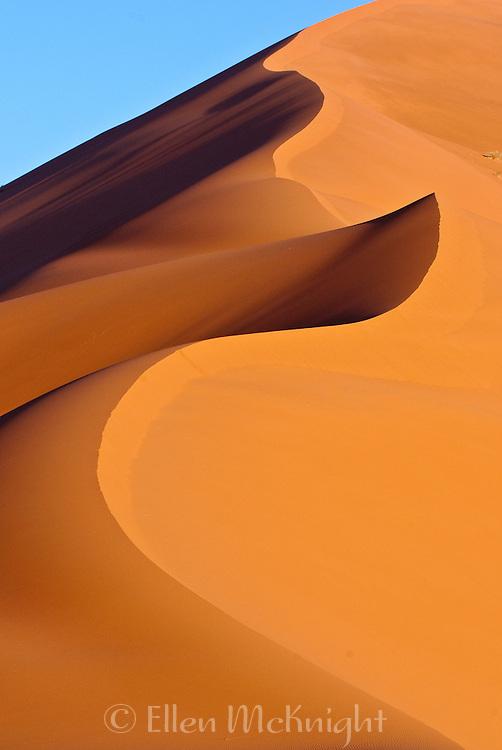 Sand dune in the Sahara Desert, Morocco
