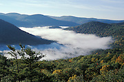 scenic view of mountain and fog