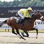 Instant Attraction and Neil Callan winning the 2.10 race