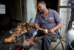 Cape Town-180906  Street vendor Phumlani Mayephu from khayelitsha cleaning the remaining hair of smiley before cleaning them . His selling smiley full head  its R70 and half is R35. The Sheep head also know as Smiley is very popular in the township it used to be cooked only if threr was traditional cremony nowadays there are many places that clean and sell this delicacy,cooked or uncooked  Pictures Ayanda Ndamane/African/news/agency ANA