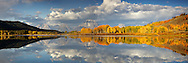 """Grand Teton Panorama at Oxbow Bend where the Snake River provides calm waters for full reflections of Fall colors and and the Grand Tetons.<br /> <br /> For production prints or stock photos click the Purchase Print/License Photo Button in upper Right; for Fine Art """"Custom Prints"""" contact Daryl - 208-709-3250 or dh@greater-yellowstone.com"""