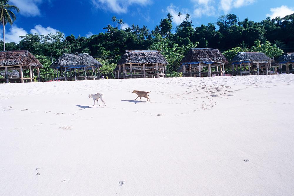 Western Samoa, Upolu Island, Lalomanu Beach, East side of island