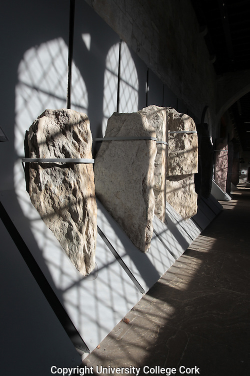 Stone Corridor, University College Cork. Ogham Stones. Photograph by Tomas Tyner, UCC.