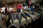 Unidentified tuna for sale in one of Bali's fish markets.