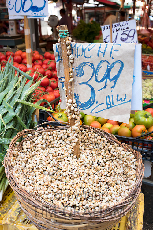Live white snails Lumache on sale with euro price ticket at Ballero street market for fresh food in Palermo, Sicily, Italy