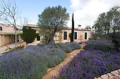 Mediterranean Garden 798