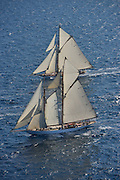 "France Saint - Tropez October 2013, Classic yachts racing at the Voiles de Saint - Tropez<br /> <br /> C,C1,MARIQUITA,""33,7"",19M JI AURIQUE/1911,WILLIAM FIFE"