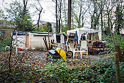 Foto: Gerrit de Heus. Hoofddorp 17-11-2014. Roy. Dakloze in het bos.