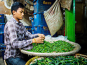 "19 DECEMBER 2013 - BANGKOK, THAILAND:    A man sorts chilies for sale in the flower market. Pak Khlong Talat (""the market at the mouth of the canal"") is a market in Bangkok that sells flowers, fruits, and vegetables. It is the primary flower market in Bangkok. It is located on Chak Phet Road and adjacent side-streets, close to Memorial Bridge. The market is open 24 hours, but is busiest before dawn, when boats and trucks arrive with flowers from nearby provinces.       PHOTO BY JACK KURTZ"