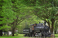 Skagit Steam Train Locomotive, Newhalem Washington