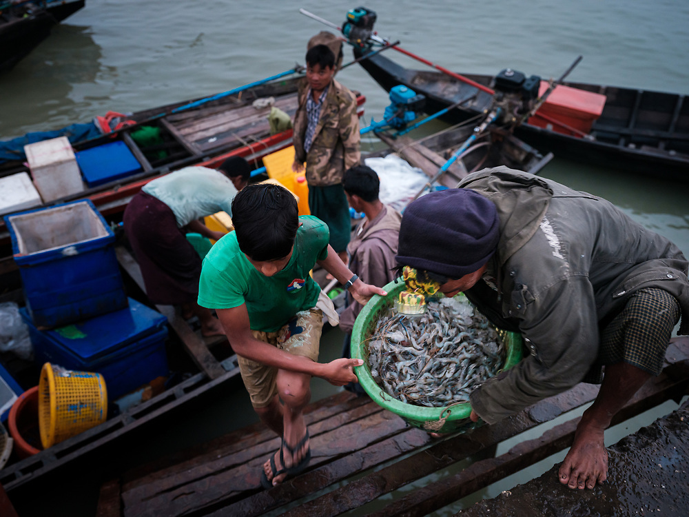 SITTWE, MYANMAR - CIRCA DECEMBER 2017: Fishermen in Sittwe close to the central market carrying the catch of the day, Myanmar