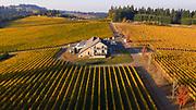 Aerial view over Björnson Vineyard, Eola-Amity Hills AVA, Willamette Valley, Oregon