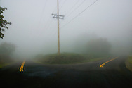 converging roads and telephone pole in fog