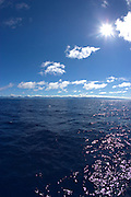 Ocean off Windward Oahu, Hawaii<br />