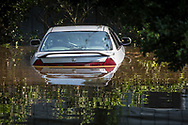Sept 1, 2017  flooded car in Vidor, Texas.Hurricane Harvey, was downgraded to a tropical storm when it flooded Vidor, Texas and the sourounding area.