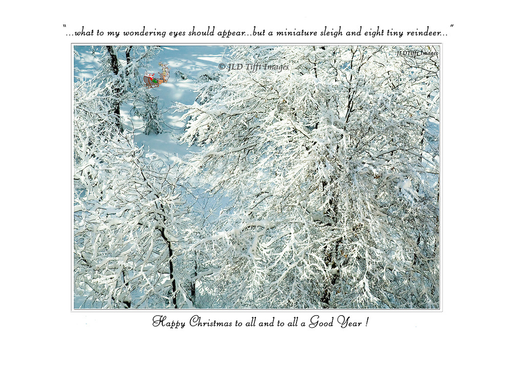 """Looks down on bare tree branches delicately covered with new fallen snow ... beyond, a vision of Santa's miniature sleigh with its """"eight tiny reindeer"""".  Above the image, the quotation from """"A Night Before Christmas"""": """"what to my wondering eyes should appear but a miniature sleigh and eight tiny reindeer"""""""