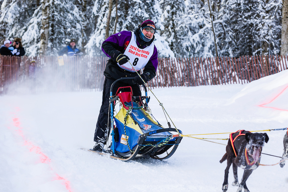 Musher Egil Ellis competing in the Fur Rendezvous World Sled Dog Championships at Goose Lake Park in Anchorage in Southcentral Alaska. Winter. Afternoon.