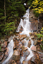 Cascades on Deer Brook in Maine's Acadia National Park.
