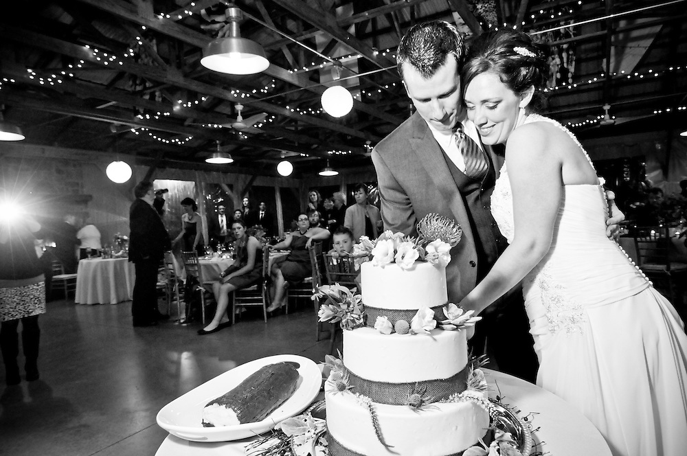 Bride and groom cutting their cake at the Audubon Center at Mill Grove, PA.