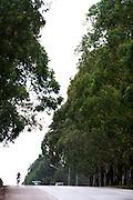 Belo Horizonte_MG, Brasil...XXIX prova ciclistica da Inconfidencia, essa prova e entre Belo Horizonte e Ouro Preto...XXIX bicycle races Inconfidencia, its between Belo Horizonte and Ouro Preto...Foto: LEO DRUMOND / NITRO