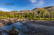 Late day along the South Fork of the Sun River in the Bob Marshall Wilderness, Montana, USA