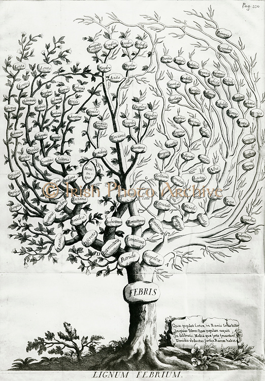 'Fever Tree showing, left, fevers Cinchona or Jesuits' Bark  was known to cure and, right, those it might cure. With his book on the treatment of fevers, 1712,  Francesco Torti spread the use of Cinchona in Italy.'