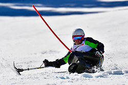 SLIVNIK Jernej, LW12-1, SLO, Slalom at the WPAS_2019 Alpine Skiing World Cup, La Molina, Spain