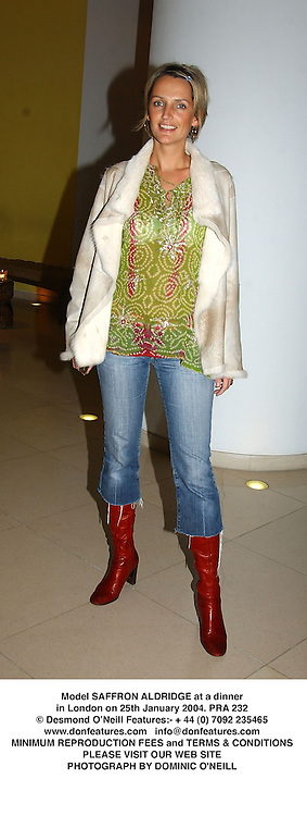 Model SAFFRON ALDRIDGE at a dinner in London on 25th January 2004.PRA 232