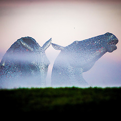 The Kelpies in morning mist, Nov 2014