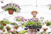 Happy gardener holding flower pots in crate at greenhouse
