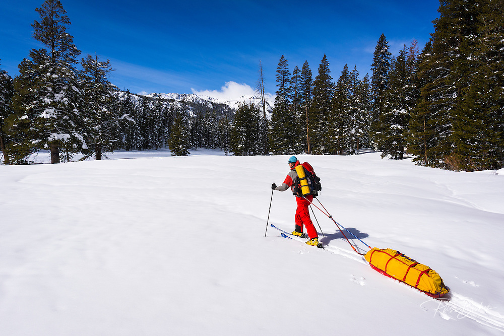 Backcountry skier towing a sled, Ansel Adams Wilderness, Sierra Nevada Mountains, California USA