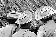 Three hats, Panama<br /> <br /> Open Edition giclee prints<br /> Exhibition fiber paper 325 Gsm.<br /> Size: 16 x 20 in / $ 230.00<br /> Size: 20 x 30 in / $ 375.00<br /> Size: 30 x 40 in / $ 500.00<br /> Size: 40 x 60 in / $750.00