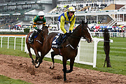 Band of Outlaws and JJ Slevin and Fakir D'Oudairies with Mark Walsh head for the start of the 2.20pm The Doom Bar Anniversary 4YO Juvenile Hurdle (Grade 1) 2m 1f during the Grand National Festival Week at Aintree, Liverpool, United Kingdom on 4 April 2019.