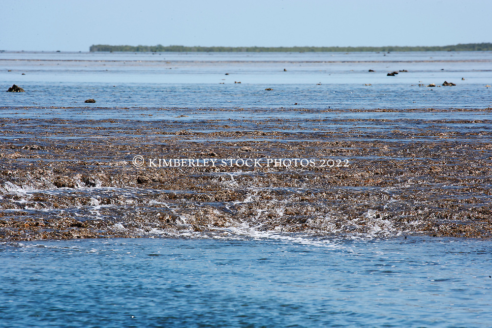 Water cascades down small channels on Montgomery Reef. On a falling tide the reef appears to rise from the ocean as water flows off the reef.  At 292km2, Montgomery is Australia's largest inshore reef.