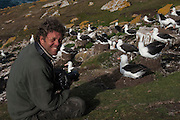 Pete Oxford photographing Black-browed Albatross<br /> The Neck, Saunders Island<br /> FALKLAND ISLANDS