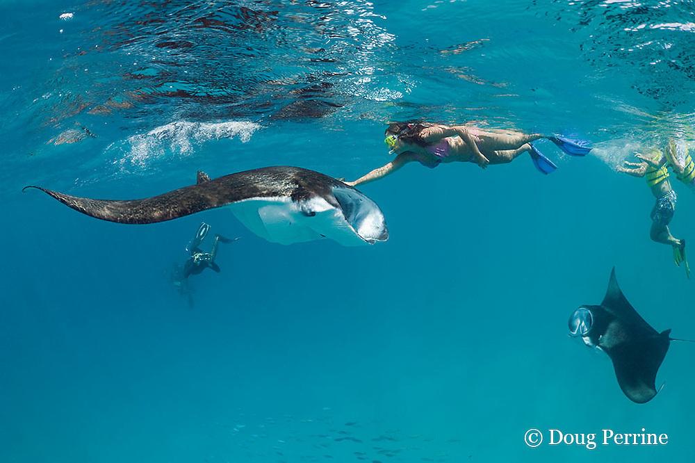 snorkeler touching manta ray, Manta alfredi (formerly Manta birostris ), while guide photographs her with her own camera,  Hanifaru Bay, Hanifaru Lagoon, Baa Atoll, Maldives ( Indian Ocean )