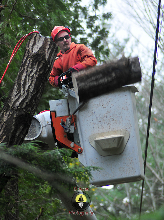 "11/9/10 -- WEST BATH, Maine. Asplundh Tree Crew Foreman Mike Lord cuts off a section of tree trunk which was hanging over the top of a power line on Tuesday afternoon on Butler Head in West Bath.  Tree and electrical crews from as far away as New York State spread across the Mid-Coast Region on Monday and Tuesday, cleaning up storm damage. Power was restored to nearly all customers by the end of the day, Tuesday.  Lord said, ""Our whole goal is to get these trees down without damage to the wires -- or the homeowners property."" A fellow Asplundh foreman, Mike Morris said, ""There were over 100 broken poles in this area -- that's what takes a long time [to repair].""   Roger S. Duncan / For The Forecaster."