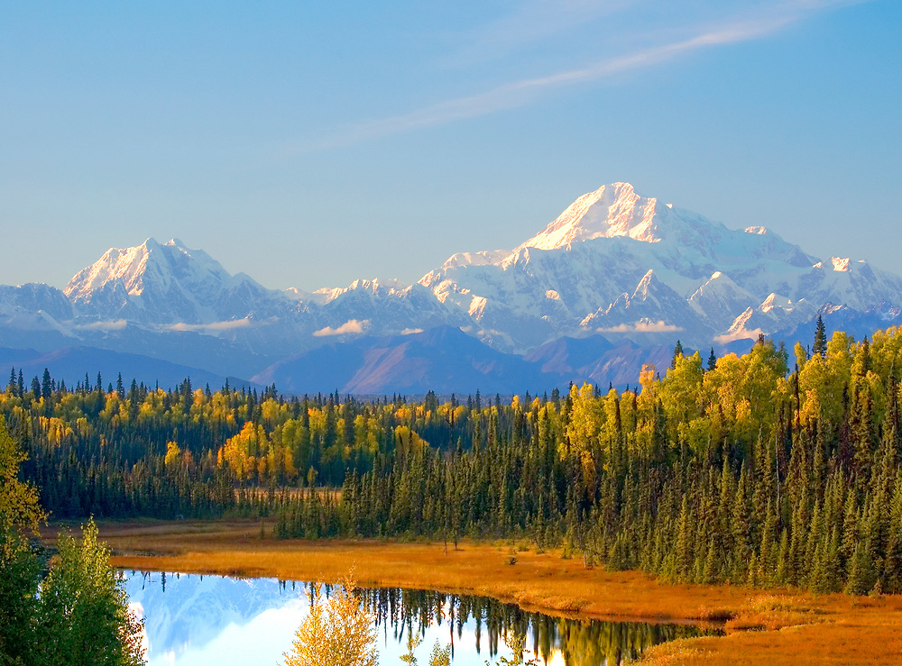 "Denali, the ""Great One"" and Mt. Hunter are pictured in this magnificent fall scenic. Denali, 20,320 ft. tall, is the tallest peak in Nth America.  Many climbers have lost their lives trying to summit Denali."