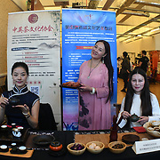 The Chinese community host a 2018 UK Chinese Society Fair, London, UK