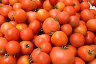 Salinas Valley Organically Grown Heirloom Tomatoes, Old Monterey Farmers Market, California
