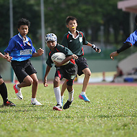 2013 C Div Rugby Championship