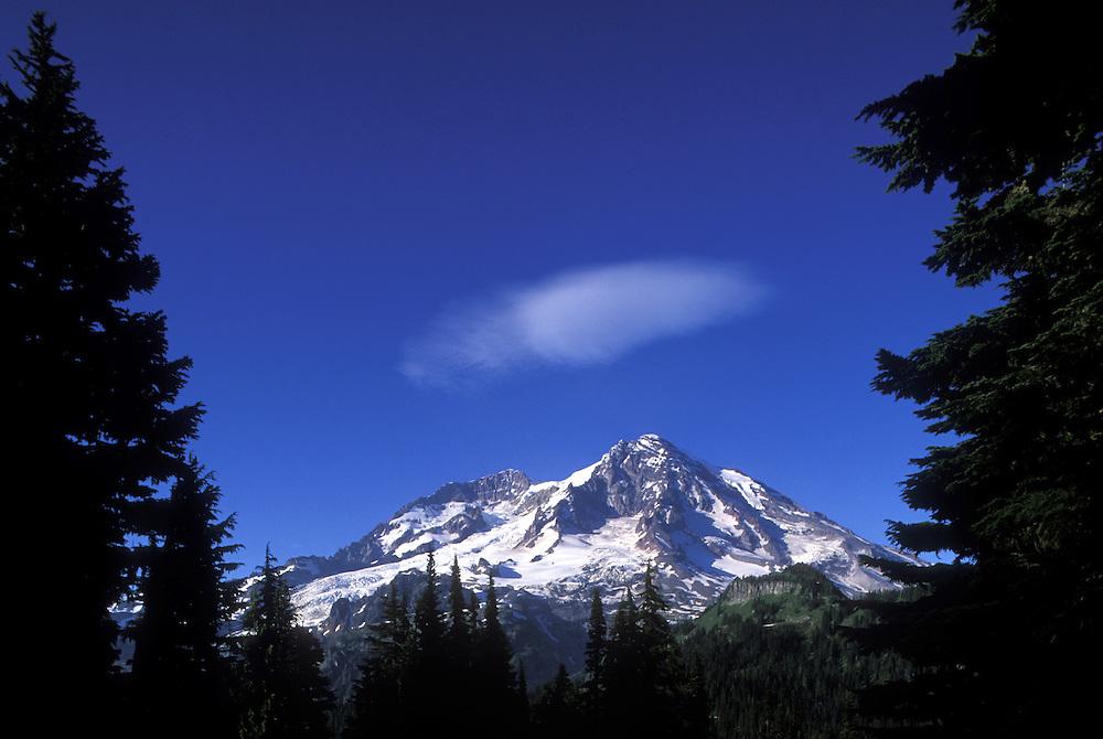 USA, Washington, Mount Rainier National Park, Evening sun lights western face of Mount Rainier, view from Kautz Creek Trail