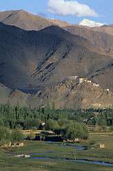 Asia, India, Ladakh, Thikse. Thikse gompa, monastery dating from 6th century perched on rock outcrop in Indus Valley.