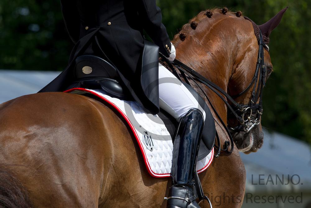 Katharina Haas - Wilsberg 2<br /> FEI European Championships Dressage Juniors and Young Riders 2012<br /> © DigiShots