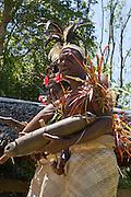 South Pacific, The Republic of Vanuatu, Shefa Provence, Epule River Valley Islanders dancing in traditional dress