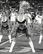 The Best Dance Team on the Planet during FIU Home Games in 2011.  The FIU Dazzlers go Black and White!