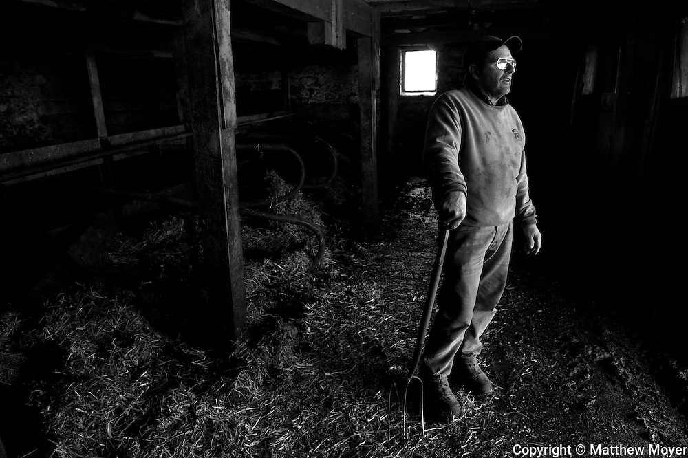 AUBURN, NEW YORK - MARCH 21: Joe Tidd stands in one of the barns on his small dairy farm in Auburn, NY March 21, 2010. The Tidd family has been hit hard by the recent drop in milk prices. They recently had to get rid of their health insurance because it had gotten too expensive.